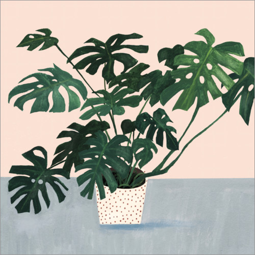 Plakat Monstera in spotted pot