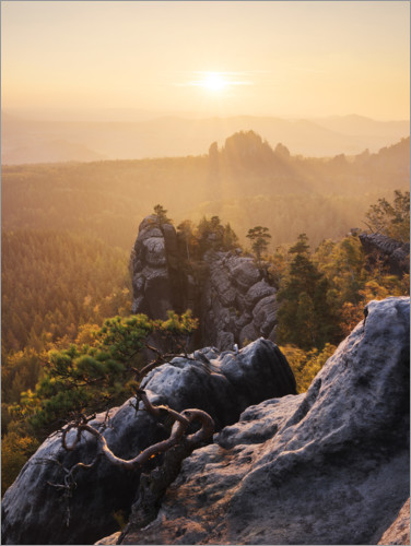 Plakat Evening in the Elbe Sandstone Mountains