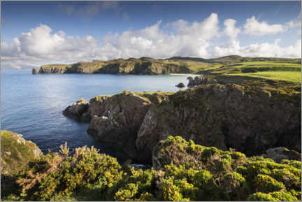 Trebilde  Ireland's coastline with hills and coves in sunshine - The Wandering Soul