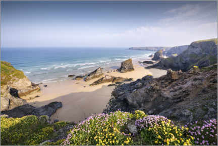 Trebilde  Beach with flowers and rocks in England - The Wandering Soul