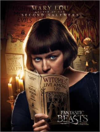 Plakat  Fantastic Beasts and Where to Find Them - Mary Lou Barebone