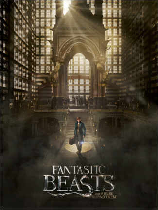 Plakat  Fantastic Beasts and Where to Find Them - Newt