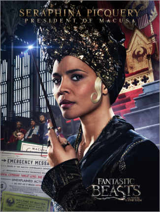 Plakat  Fantastic Beasts and Where to Find Them - Seraphina Picquery