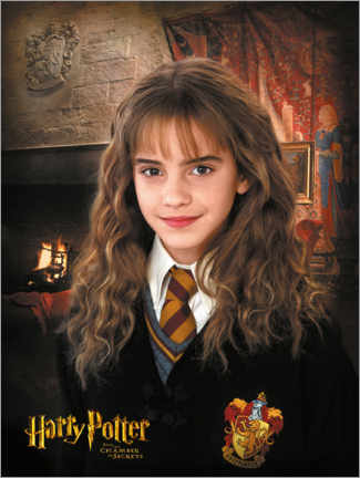 Plakat  Hermione and the Chamber of Secrets