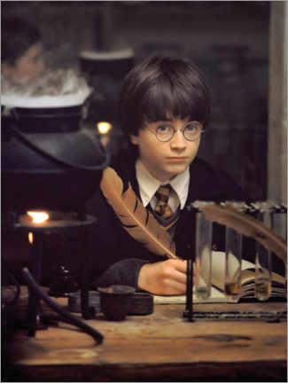 Akrylbilde  The young Harry Potter