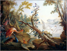Lerretsbilde  Lake with swans, a flamingo and a peacock - François Boucher
