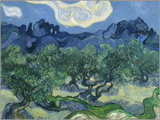 Akrylbilde  Olive Trees with the Alpilles in the Background - Vincent van Gogh