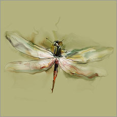 Galleriprint  Dragonfly in watercolor