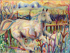 Galleriprint  My Soul is an Escaped Horse - Josh Byer