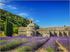 Galleriprint  Monastery with lavender field - Terry Eggers