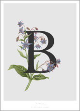 Plakat  B is for Borage - Charlotte Day