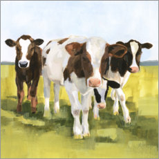 Selvklebende plakat  Cows in the pasture II - Victoria Borges