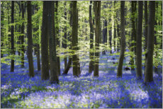 Selvklebende plakat  Blue sea of flowers in the forest with light - The Wandering Soul