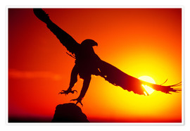 Plakat  A golden eagle flies at dawn - Dave Welling