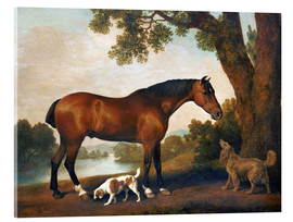 Akrylbilde  Horse and two dogs - George Stubbs
