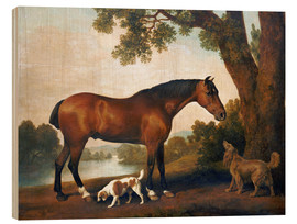 Trebilde  Horse and two dogs - George Stubbs
