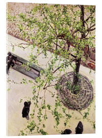 Akrylbilde  Boulevard from above - Gustave Caillebotte