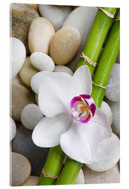 Akrylbilde  Bamboo and orchid - Andrea Haase Foto