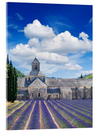 Akrylbilde  Sénanque abbey with lavender field, Provence, France