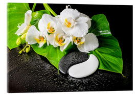 Akrylbilde  White orchids and Yin-Yang stones