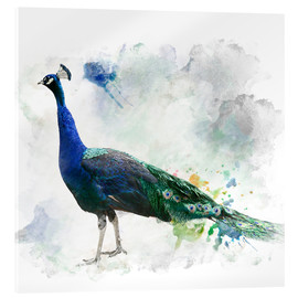 Akrylbilde  Peacock of the page