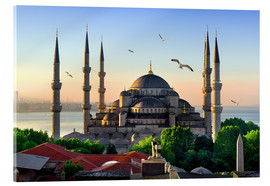 Akrylbilde  The blue mosque in Istanbul