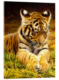 Akrylbilde  Young tiger lying in grass